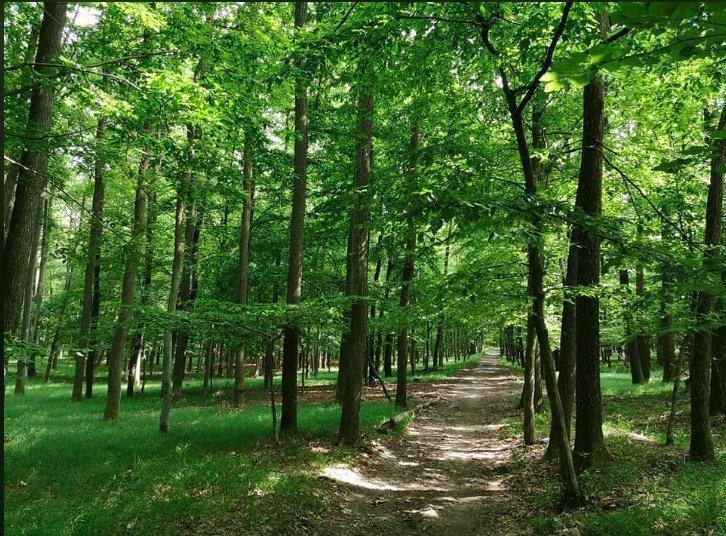 City Trails to do in Bratislava